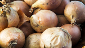 Closeup of pile of onions Stock Photography