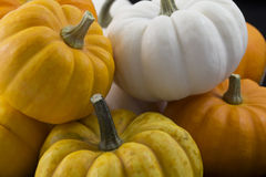 Closeup of piled orange, yellow and white pumpkins. Closeup of orange, yellow and white pumpkins, piled on a black background Royalty Free Stock Image