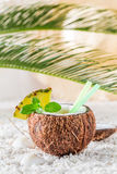 Closeup of pinacolada in coconut with pineapple and mint leaves Stock Photography