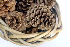 Closeup of pinecones in a basket Royalty Free Stock Photos