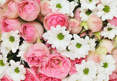 Closeup of pink roses and white daisy flowers bouquet Stock Photo