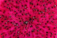 Closeup of a Piyaya, exotic fruit Stock Photo