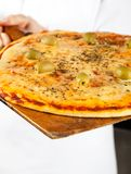 Closeup Of Pizza On Shovel. Midsection of chef holding delicious pizza on shovel Royalty Free Stock Photography