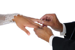 Closeup Placing Rign On Brides Habd Royalty Free Stock Image