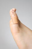 Closeup of a plaster on female toe. Injured female toe with adhesive bandage Royalty Free Stock Images