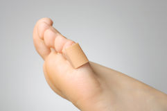 Closeup of a plaster on female toe. Injured female toe with adhesive bandage Royalty Free Stock Photography