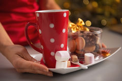 Closeup on plate with cookies and cup of hot chocolate Royalty Free Stock Photo