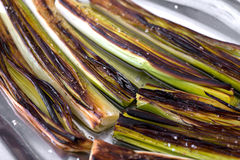 Closeup of a plate with leeks Royalty Free Stock Photos