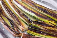 Closeup of a plate with leeks Stock Photography
