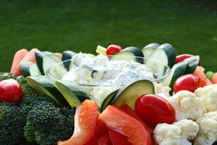 Closeup of a plate of raw vegetables and dip. Outdoors Royalty Free Stock Photography