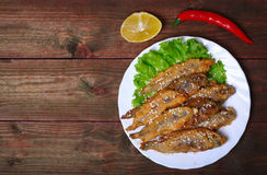 Closeup of a plate with spanish boquerones fritos, battered and fried anchovies typical in Spain, on a rustic wooden table Royalty Free Stock Photography