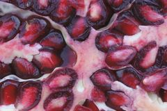 Closeup of Pomegranate Stock Images