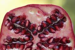 Closeup of Pomegranate Stock Photos