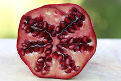Closeup of Pomegranate Stock Image