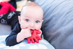 Closeup portrait of a baby with a chew toy royalty free stock image
