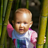 Closeup portrait of beautiful baby girl in bamboo. Cute little girl looking at camera Stock Image