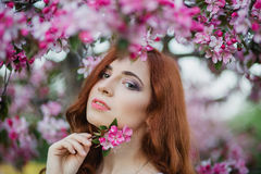 Closeup portrait of beautiful female hold blossom branch  in fresh pink floral garden, warm sunset light, spring nature Royalty Free Stock Images