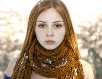 Closeup portrait of beautiful girl in snow-covered scarf Stock Photography