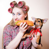 Closeup portrait of beautiful woman young girl with red lips. And blue eyes in curlers eating hot dog on white background holding little cute puppy Stock Images
