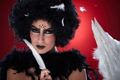Closeup portrait of black bogy with white feathers Royalty Free Stock Images