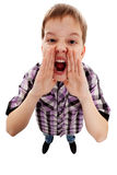 CLOSEUP OF A BOY SCREAMING OUT LOUD. Closeup portrait of a boy screaming out loud on a white background royalty free stock photo