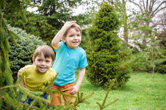 Closeup portrait of Caucasian two little brothers boys laughing outside in park on summer day stock images