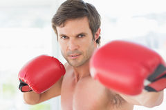 Closeup portrait of a determined male boxer Royalty Free Stock Images