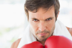 Closeup portrait of a determined male boxer Stock Image