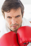 Closeup portrait of a determined male boxer Stock Photography