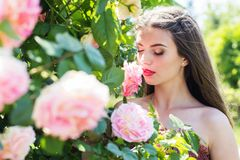 Closeup portrait of fashion girl near pink roses Stock Images