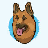 Closeup Portrait of the German Shepherd Dog Breed on the White Background. Hand Drawn Line Art Royalty Free Stock Photography