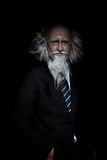 Closeup portrait of handsome eleagnt oldman in classic suit on b Stock Photography