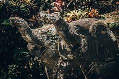 Closeup portrait of Hindu Buddhist traditional animal sculpture royalty free stock photos