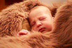 closeup portrait of newborn baby sleeping face Stock Image