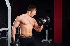 Closeup portrait of professional bodybuilder Strong muscular yang man doing exercise. Workout with barbell at gym Stock Photos