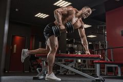 Closeup portrait of professional bodybuilder workout with barbel stock photo