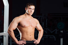 Closeup portrait of professional bodybuilder workout with barbell at gym. Confident muscular man training . Looking Stock Image