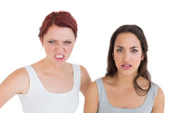 Closeup portrait of two angry young female friends Royalty Free Stock Images