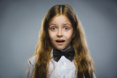 Closeup Portrait of wondering girl going surprise on gray background.  Royalty Free Stock Photography