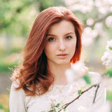 Closeup portrait of young beautiful redhead woman with an apple tree branch Royalty Free Stock Images
