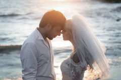 Closeup portrait of young and happy newlyweds Royalty Free Stock Photo