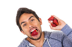 Closeup portrait young man eating red strawberries Royalty Free Stock Photo