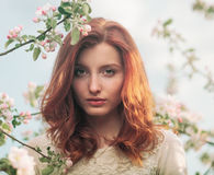 Closeup portrait of a young sensual redhead woman in a blossoming trees Stock Images
