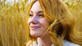 Closeup portrait of young woman with wheat ear day dreaming in wheat field