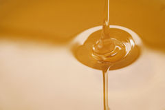 Closeup of pouring organic honey. Amber golden color Stock Photography