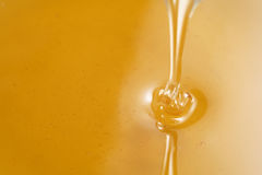 Closeup of pouring organic honey with copy space. Amber golden color Stock Image