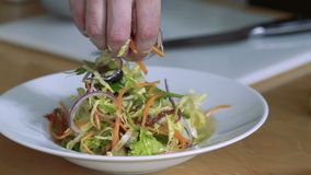 Closeup of pouring salad vegetables on plate. Slowly stock footage