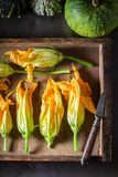 Preparation for crispy roasted zucchini flower in wooden box. Closeup of preparation for crispy roasted zucchini flower in wooden box stock images