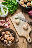 Closeup of preparing baked snails with garlic butter Stock Photography