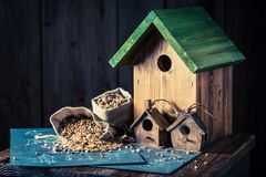 Project of small bird feeder and blue construction plan. Closeup of project of small bird feeder and blue construction plan royalty free stock photos